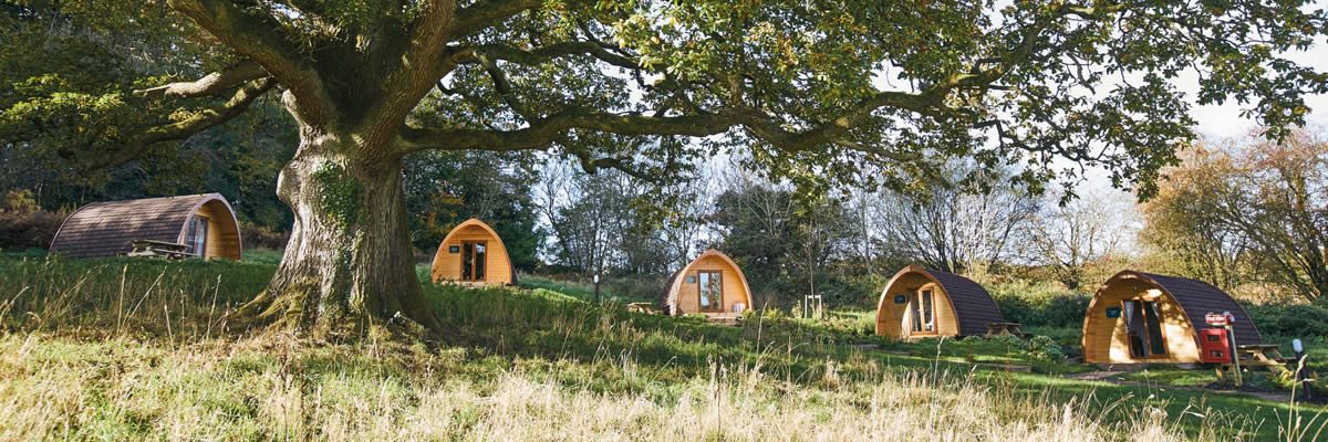 Glamping at Whitemead